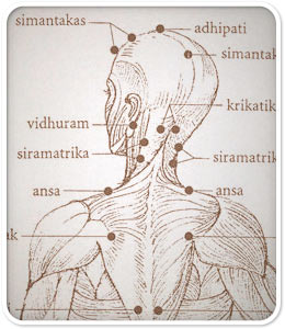 acupressure points for migraines